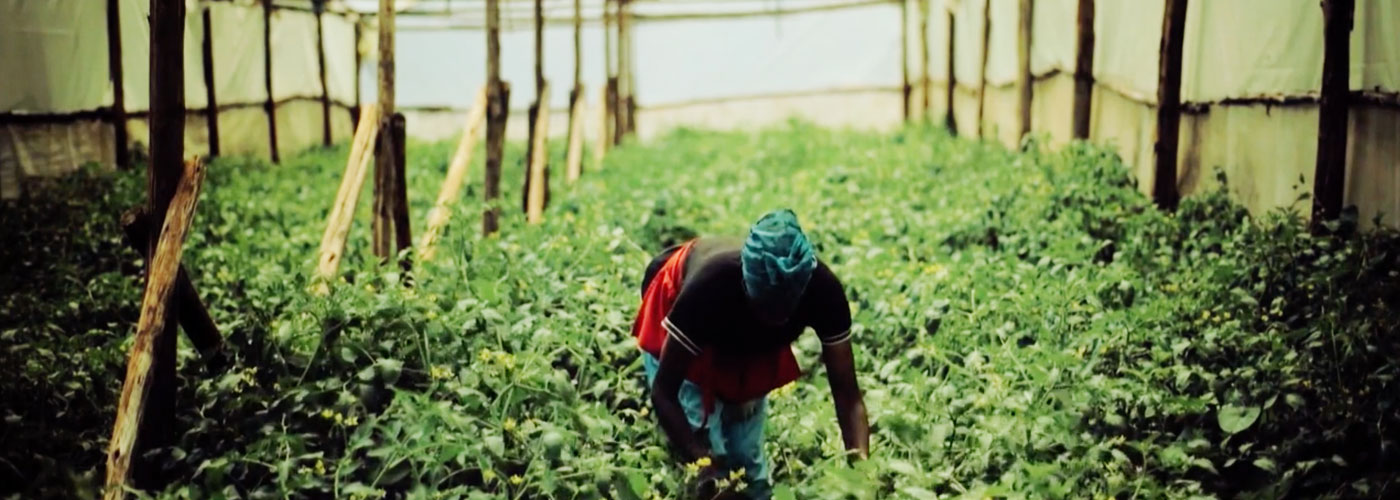 This Company Wants to Connect Over 25 Million Farmers to Urban Markets
